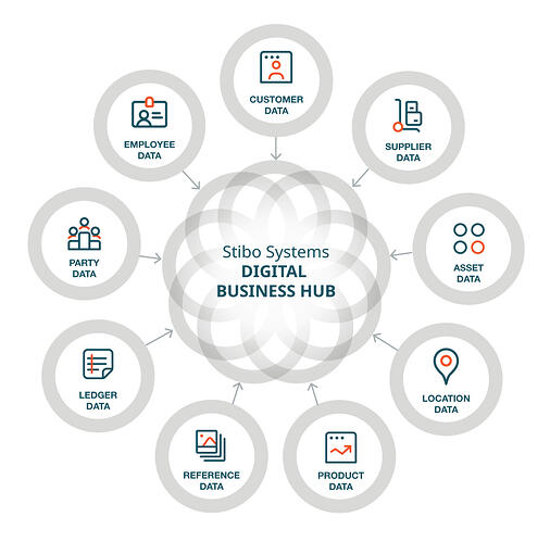 digital business hub shapes the data foundation for success