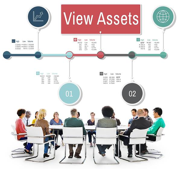 maximize asset data