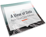 A View of Data From Chief Data Officers