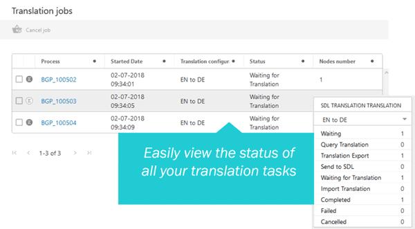 Enhanced Translation Services