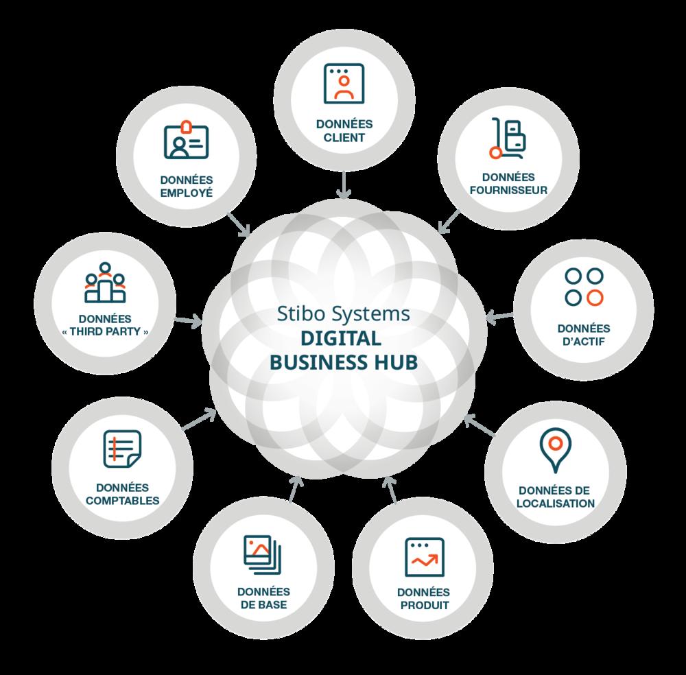 large-web_digital business hub domains_translations-04