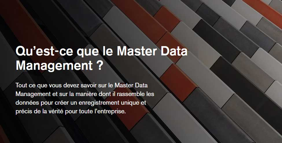 what-is-master-data-management-fr